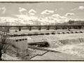 04-DSF6780-ponte-Vecchio