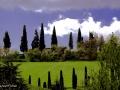 DSF8523-Villa-Cipressi-Veggia-n1